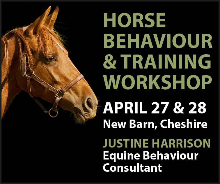 Justine Harrison Workshop April 2019 (Shropshire Horse)