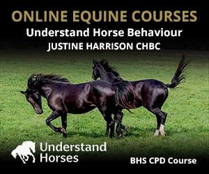 UH - Understand Horse Behaviour (Shropshire Horse)